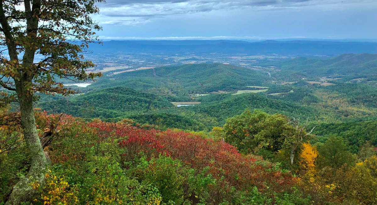 Shenandoah's Skyline Drive & the Views You'll Never Forget